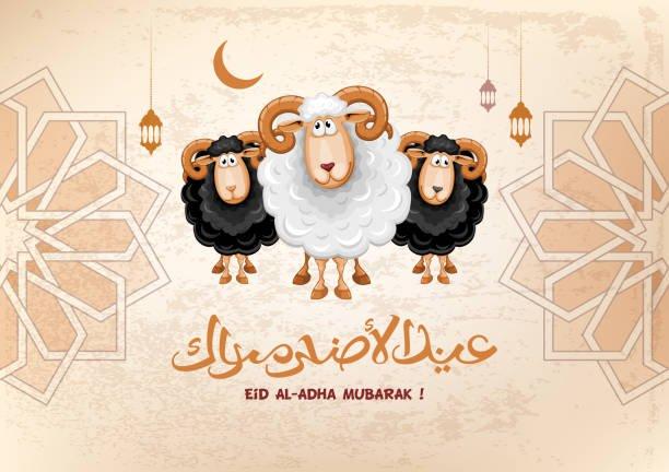 عيد اضحى مبارك | اجمل صور وتهانى وعبارات | عيد سعيد 6